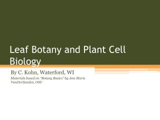 Leaf Botany and Plant Cell Biology
