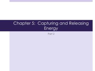 Chapter 5:  Capturing and Releasing Energy