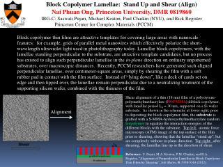 Block Copolymer Lamellae: Stand Up and Shear (Align)