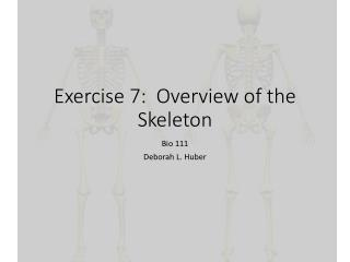 Exercise 7: Overview of the Skeleton
