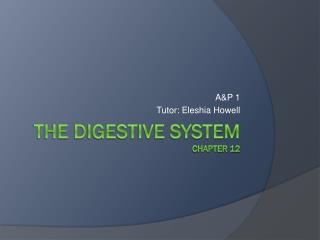 The Digestive System Chapter 12
