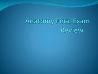 Anatomy Final Exam Review