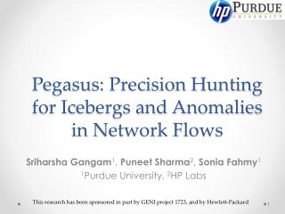 Pegasus: Precision Hunting for Icebergs and Anomalies in Network Flows