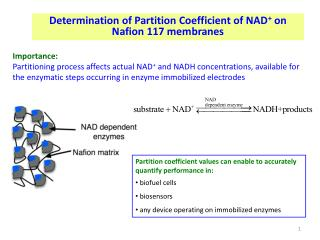 Determination of Partition Coefficient of NAD +  on  Nafion  117 membranes
