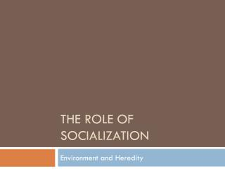 The Role of Socialization