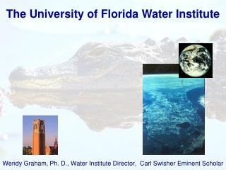 The University  of  Florida Water Institute