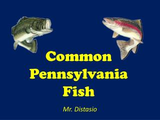 Common Pennsylvania Fish