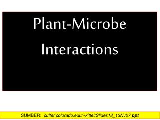 Plant-Microbe  Interactions