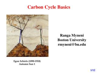 Carbon Cycle Basics