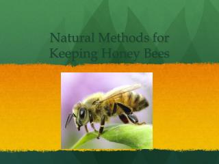 Natural Methods for  Keeping Honey Bees