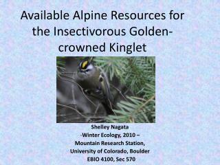 Available Alpine Resources for the Insectivorous Golden-crowned Kinglet
