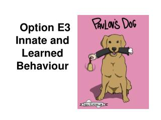 Option E3 Innate and Learned Behaviour