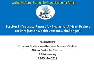 Katalin Bokor Economic Statistics and National Accounts Section African Centre for Statistics