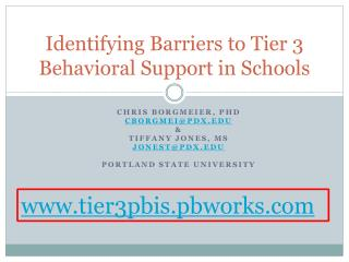 Identifying Barriers to Tier 3 Behavioral Support in Schools