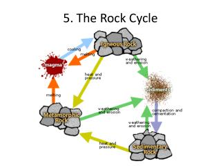 5. The Rock Cycle