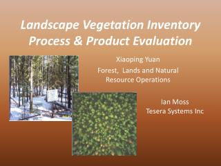 Landscape Vegetation Inventory Process & Product Evaluation