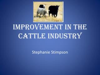Improvement in the Cattle Industry