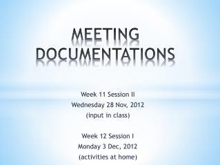 MEETING DOCUMENTATIONS