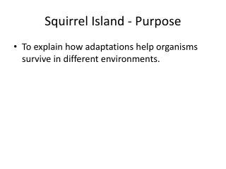 Squirrel Island - Purpose