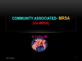 community associated-  MRSA ( ca-mrsa)