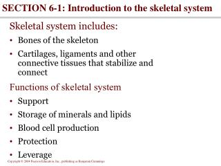 SECTION 6-1: Introduction to the skeletal system