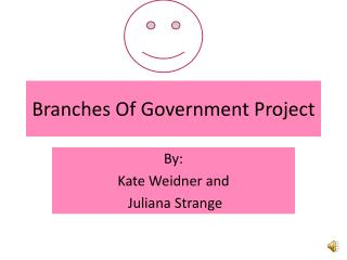 Branches Of Government Project