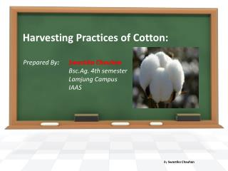 Harvesting Practices of Cotton: