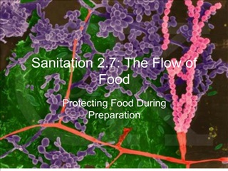 Sanitation 2.7: The Flow of Food