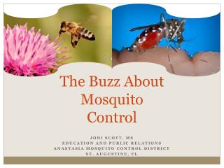 The Buzz About Mosquito Control