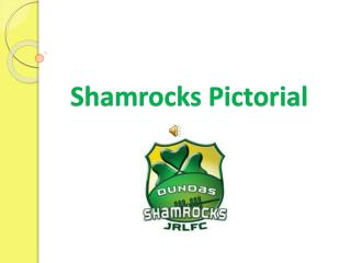 Shamrocks Pictorial