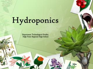 Hydroponics Department Technological Studies  High Point Regional High School