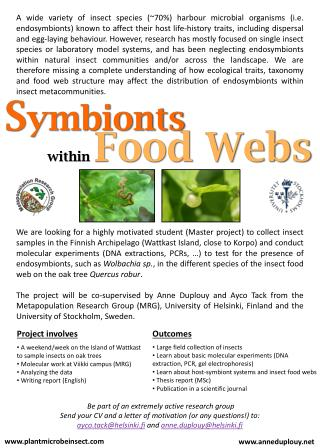 within  Food Webs