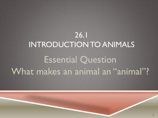 26.1 Introduction to Animals