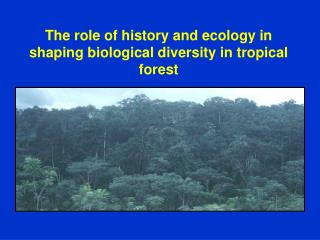The role of history and ecology in shaping biological diversity in tropical forest
