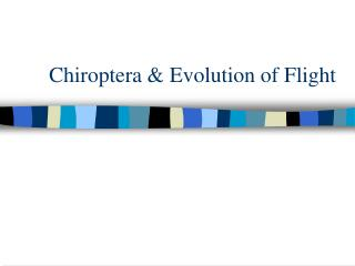 Chiroptera & Evolution of Flight