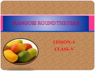 MANGOES ROUND THE YEAR