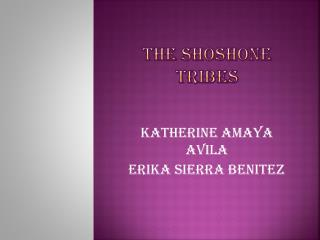 THE SHOSHONE TRIBES