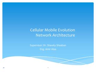 Cellular Mobile Evolution Network Architecture