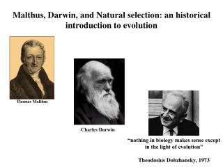 Malthus, Darwin, and Natural selection: an historical introduction to evolution