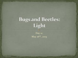 Bugs and Beetles: Light