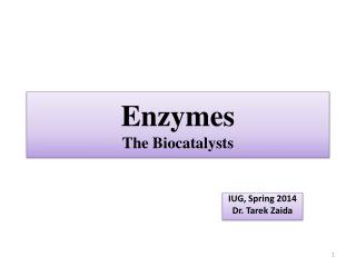 Enzymes The  Biocatalysts