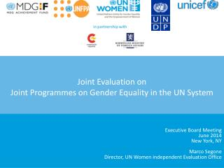 Joint Evaluation on  Joint Programmes on Gender Equality in the UN System