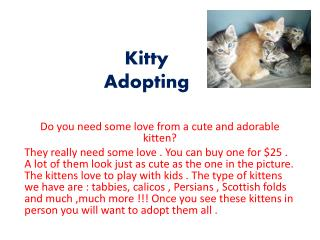Kitty Adopting