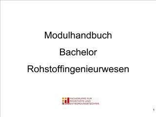 Modulhandbuch Bachelor Rohstoffingenieurwesen