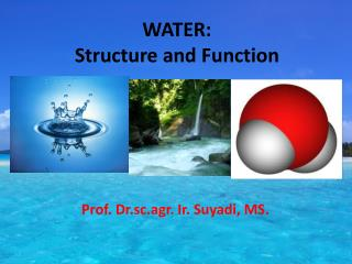 WATER: Structure and Function
