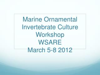 Marine Ornamental Invertebrate Culture Workshop WSARE March 5-8 2012