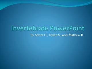 Invertebrate PowerPoint