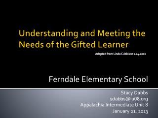 Understanding and Meeting the Needs of the Gifted Learner