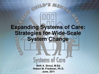 Expanding Systems of Care: Strategies for Wide-Scale        System Change