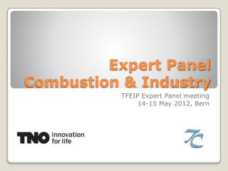 Expert Panel Combustion & Industry